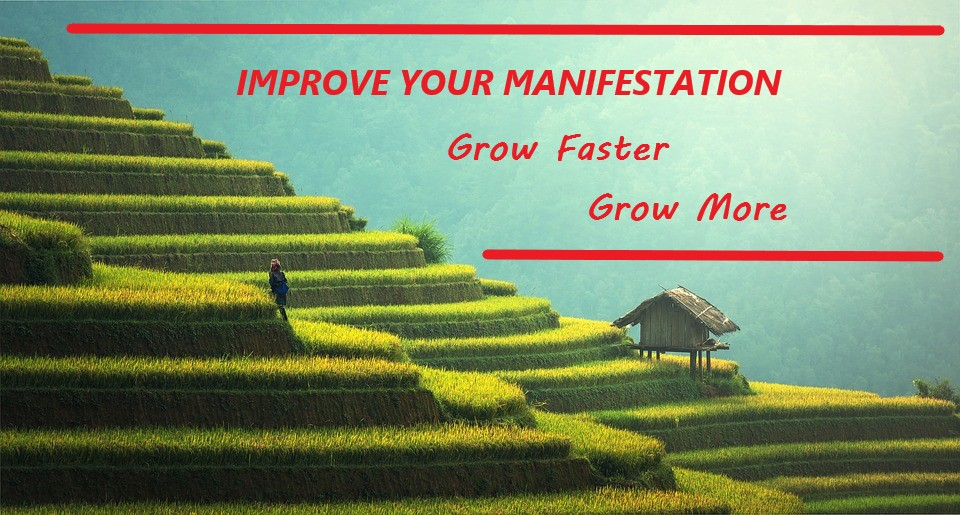 Improve Your Law of Attraction Manifestation